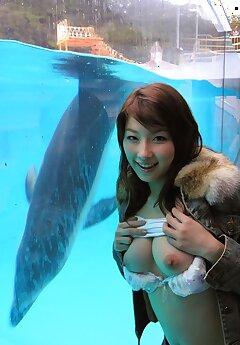 japanese voyeur pictures